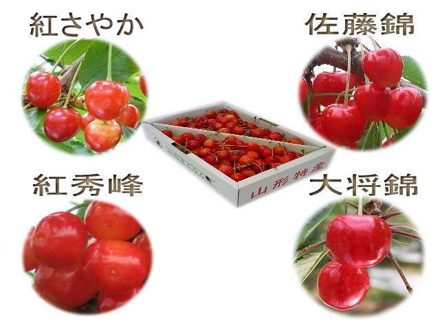 食べ比べ全4品種フルコース